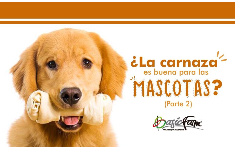 carnaza mascotas basic farm