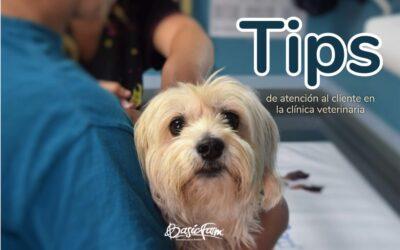 Tips de atención al cliente en la clínica veterinaria