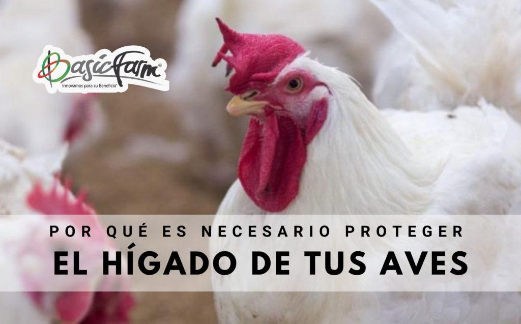 importancia de proteger el hígado de los animales