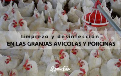 ¿Por qué la limpieza y desinfección en las granjas avícolas y porcinas es fundamental?