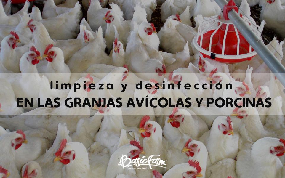 limpieza y desinfeccion granjas avicolas porcinas