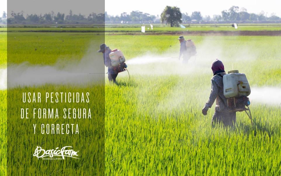 basic farm usar pesticidas forma segura correctamente