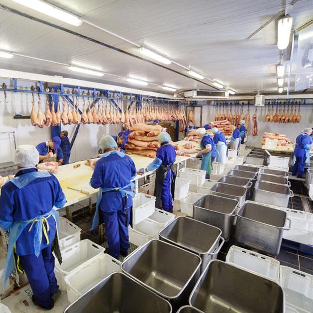 desinfeccion-mejorar-seguridad-alimentaria-inocuidad