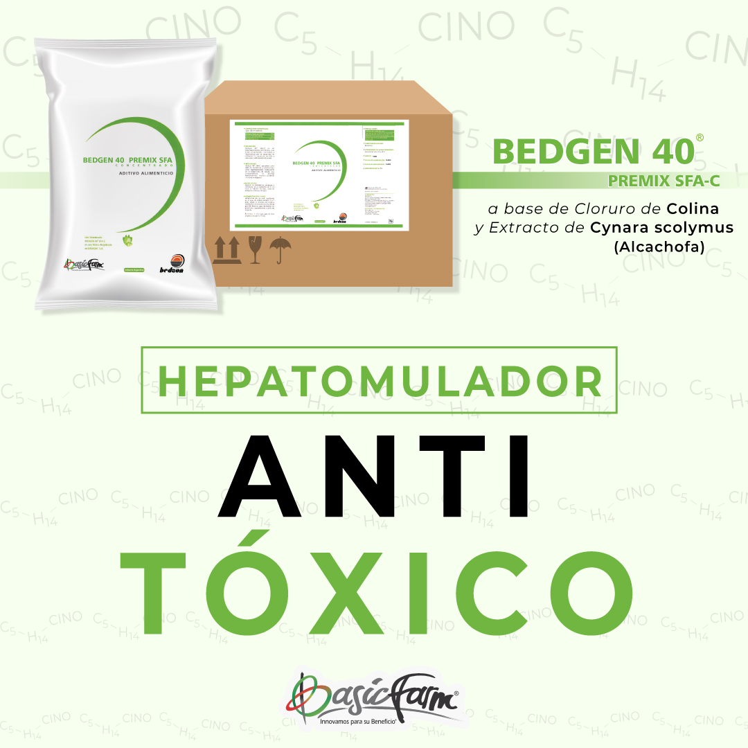 hepatomulador anti toxico