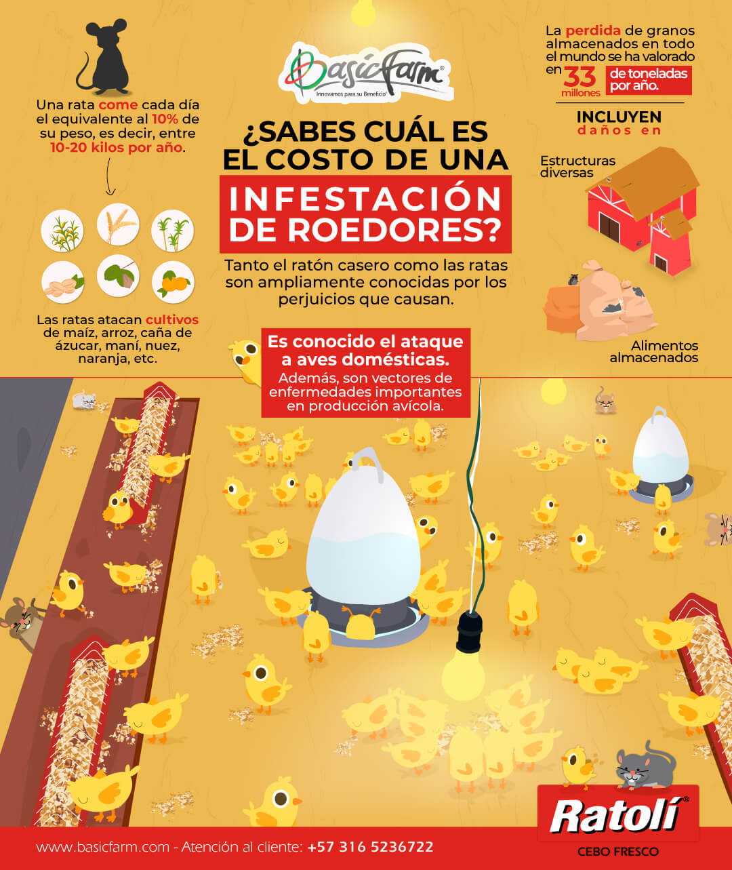 control de infestacion de roedores basic farm