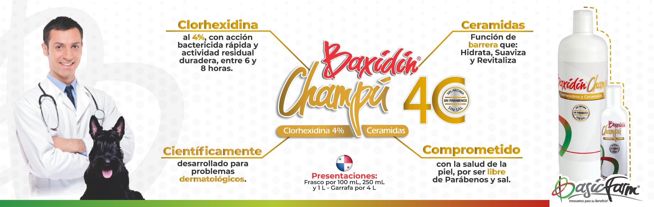 Banner Panamá
