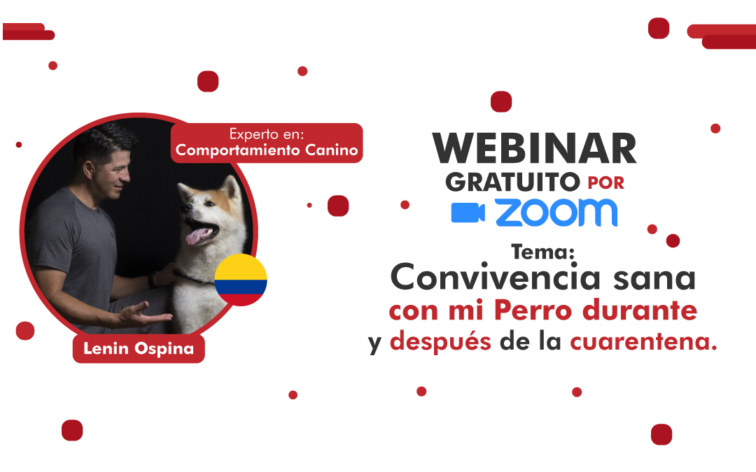 Convivencia sana con tu perro durante y después de la cuarentena | Webinar Lenin Ospina