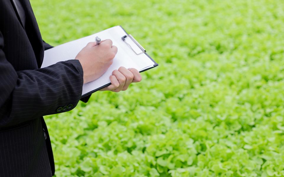 mejorar estandar industria alimentaria
