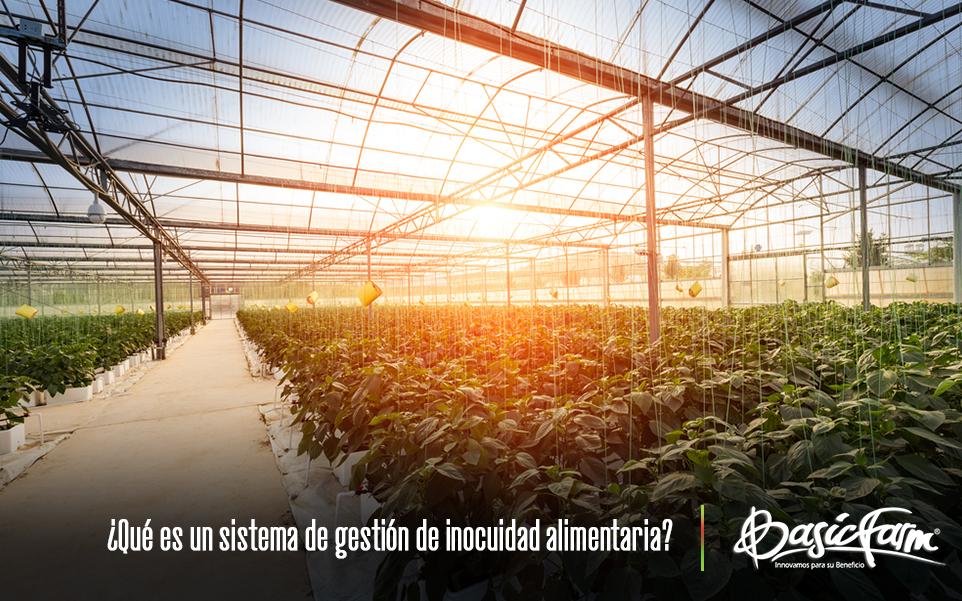 ¿Qué es un sistema de gestión de inocuidad alimentaria?