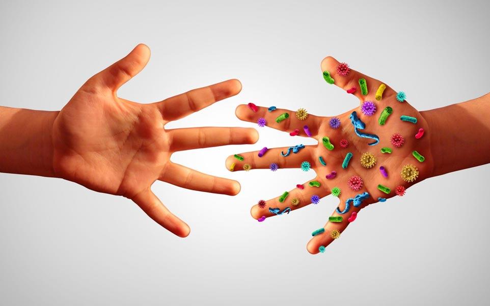 germenes manos
