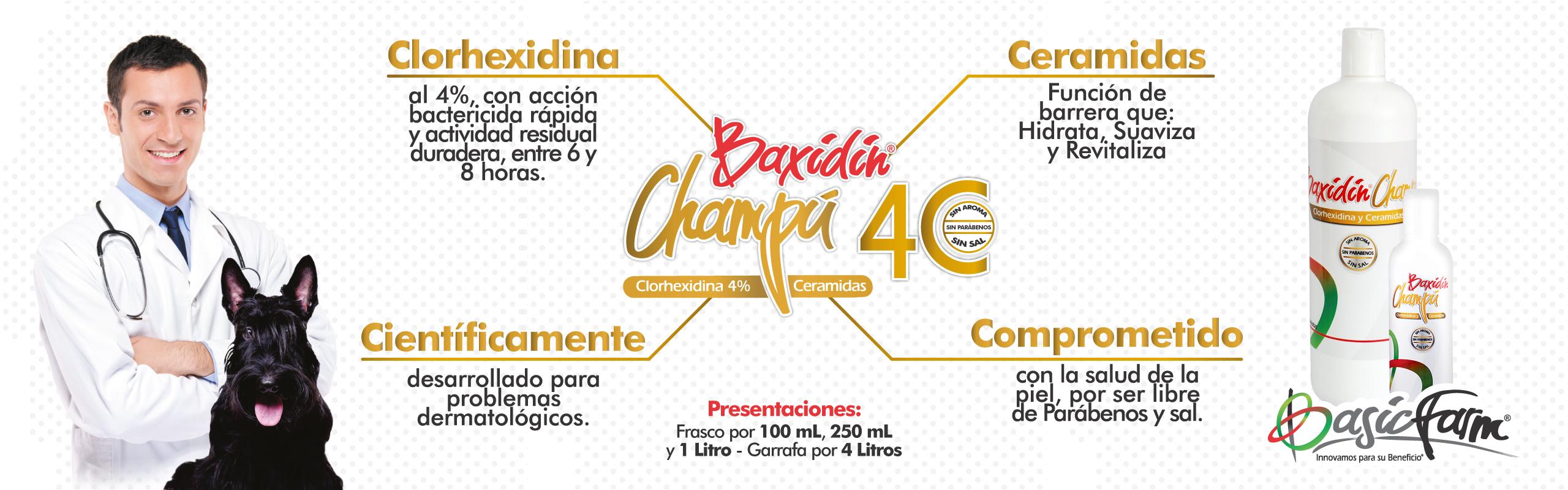 Banner pagina web Baxidin Champu